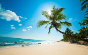 free-hd-sun-beach-tablet-wallpapers-download