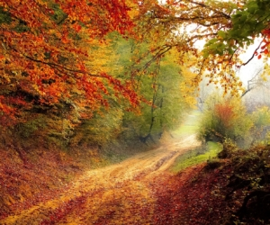 Auberges espagnoles d'automne